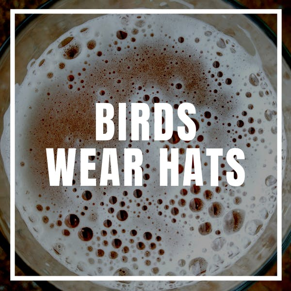 Birds Wear Hats (Liability)